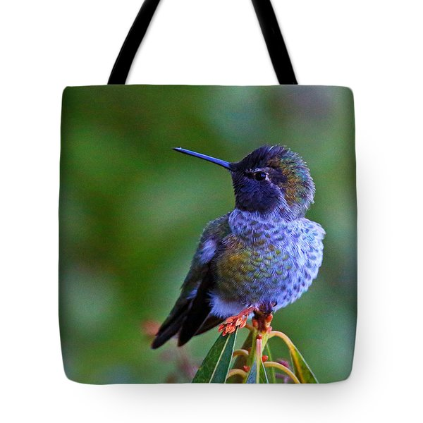 Annas Hummingbird Tote Bag by Randy Hall