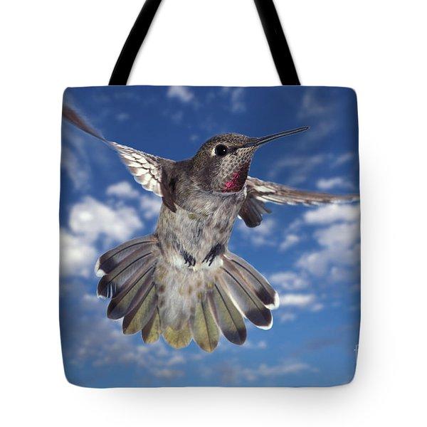 Annas Hummingbird Tote Bag by Ron Sanford