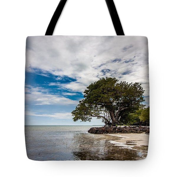 Anne's Beach-3184 Tote Bag