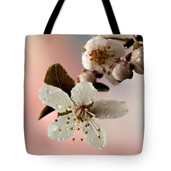 Announcing Spring Tote Bag by Mary Jo Allen
