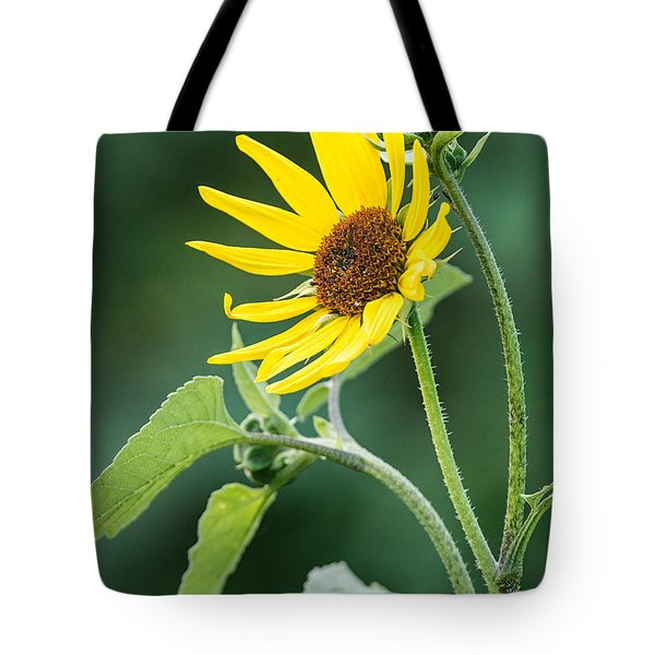 Annual Sunflower Tote Bag