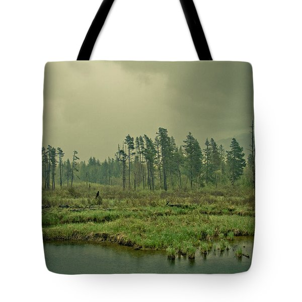 Another World-another Time Tote Bag by Eti Reid