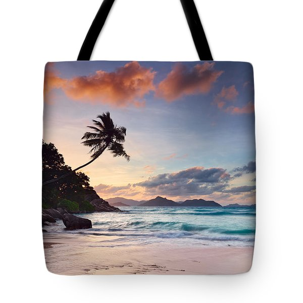 Anse Severe Tote Bag by Michael Breitung