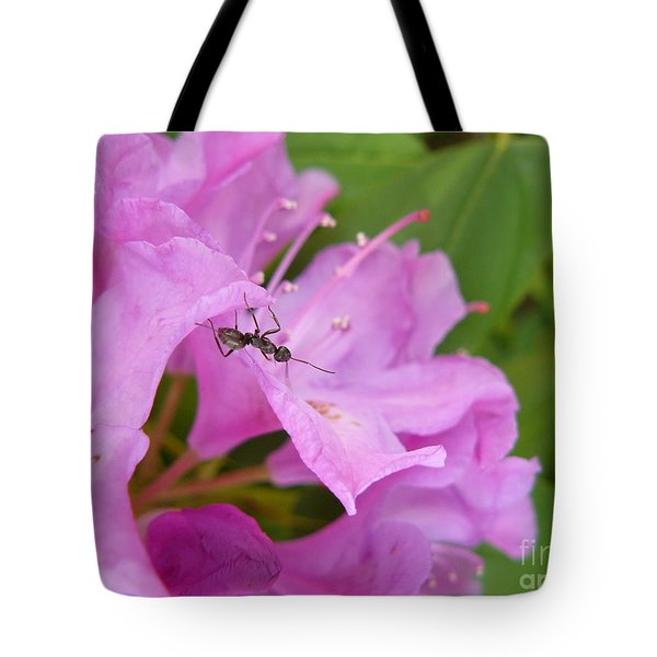 Ant On Flower Tote Bag