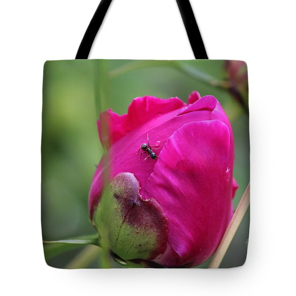 Tote Bag featuring the photograph Ant On Peony by Ann E Robson