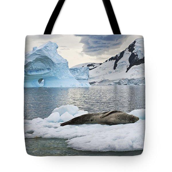 Antarctic Serenity... Tote Bag
