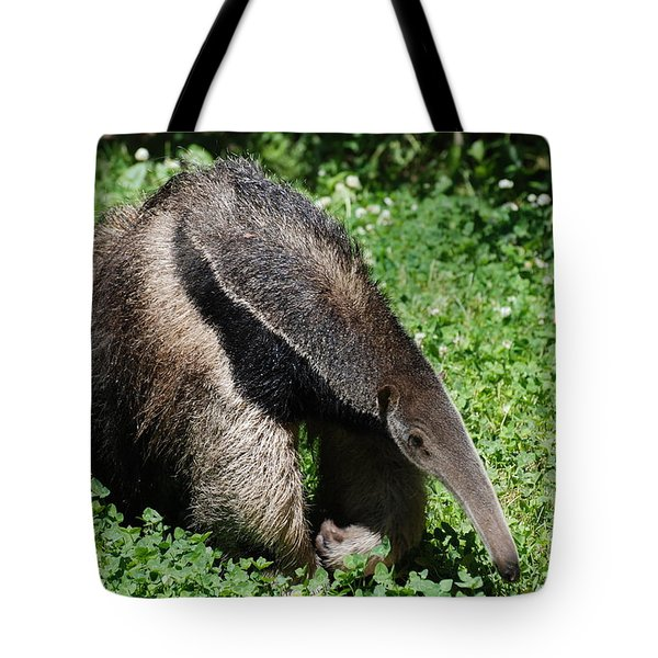 Anteater Tote Bag by DejaVu Designs