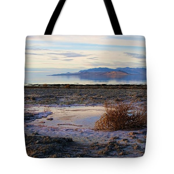 Tote Bag featuring the photograph Antelope Island - Tumble Weed by Ely Arsha
