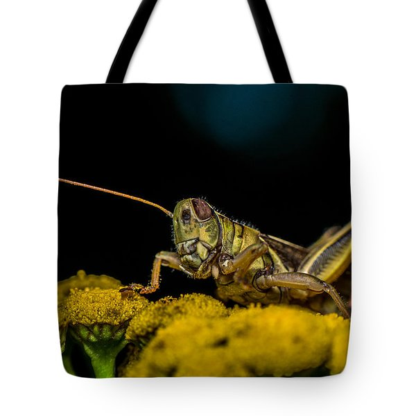 Antenna Down Tote Bag by Paul Freidlund