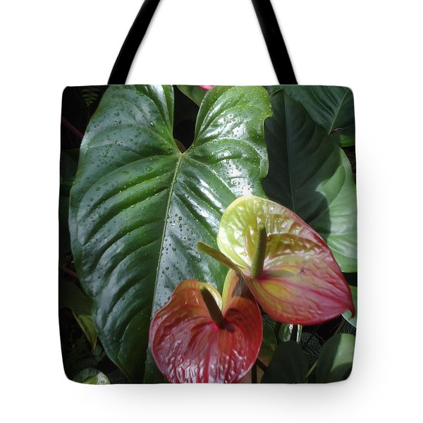 Anthurium Tote Bag by Ann Johndro-Collins