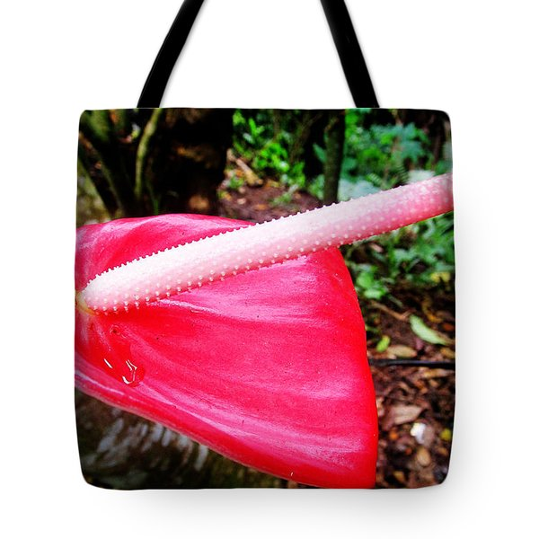 Anthurium Flower One Tote Bag by Tina M Wenger