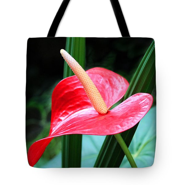 Tote Bag featuring the photograph Anthurium by Mariarosa Rockefeller