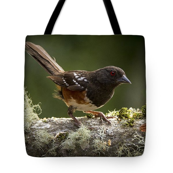 Anticipation Tote Bag by Jean Noren