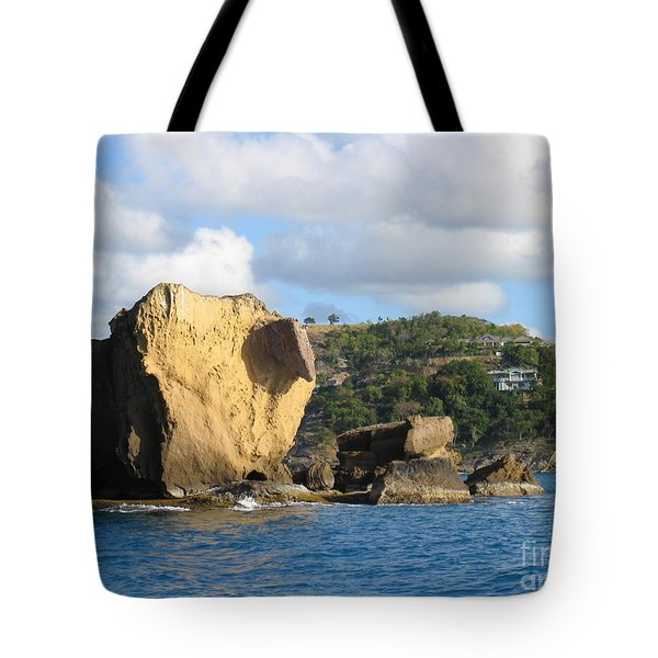 Tote Bag featuring the photograph Antigua - Aliens by HEVi FineArt