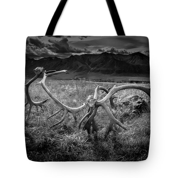Antlers In Black And White Tote Bag