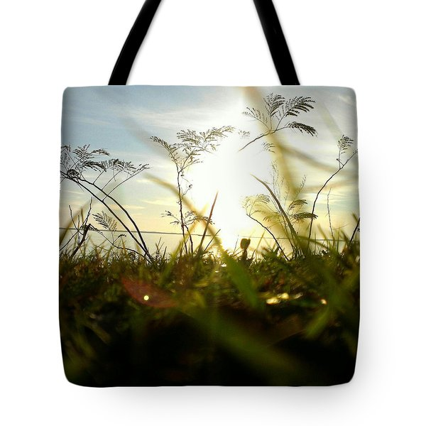 Ant's Eye View Tote Bag by Thomasina Durkay