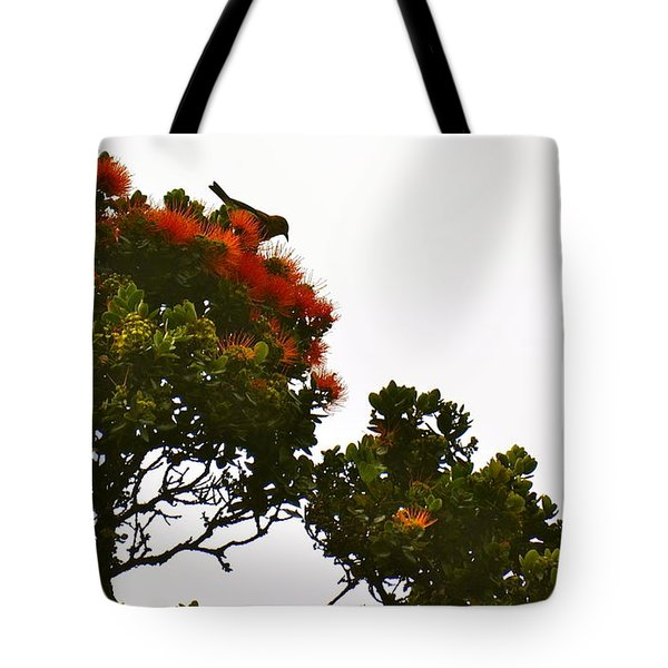 Apapane Atop An Orange Ohia Lehua Tree  Tote Bag by Lehua Pekelo-Stearns