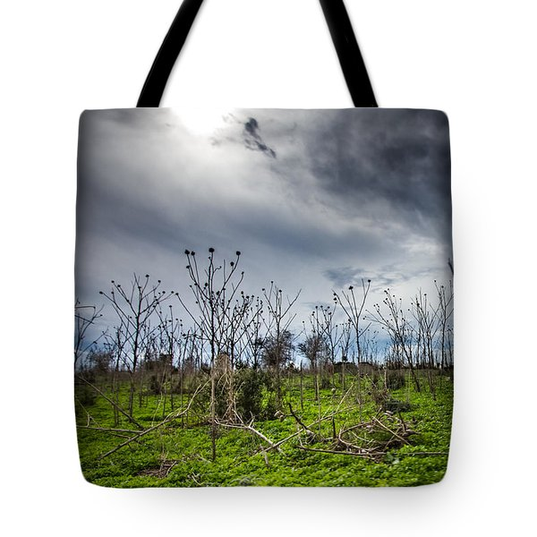 Apocalyptic Landscape Tote Bag