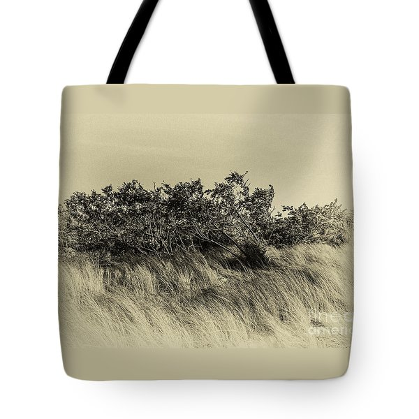 Apollo Beach Grass Tote Bag