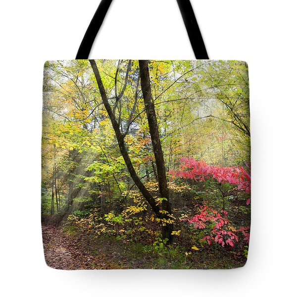 Appalachian Mountain Trail Tote Bag