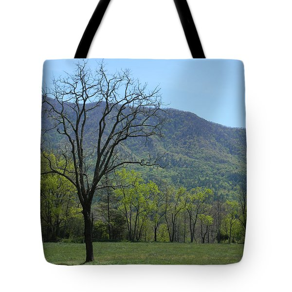Appalachian Pathway Tote Bag