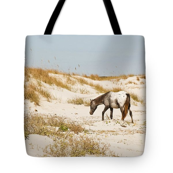 Appaloosa Beach Tote Bag by Barbara Northrup