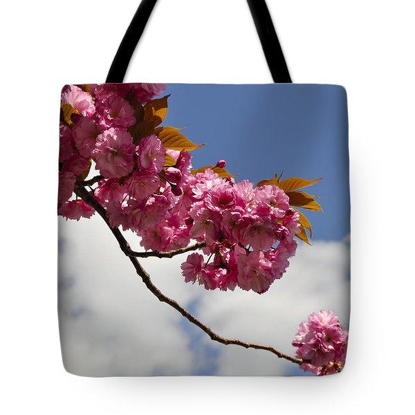 Apple Beauty Tote Bag