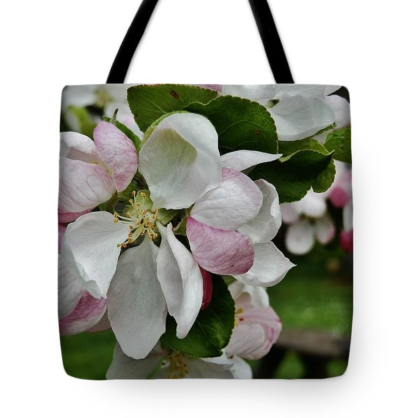 Apple Blossoms 2 Tote Bag