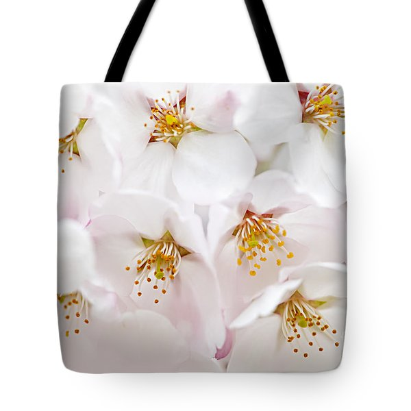 Apple Blossoms Tote Bag by Elena Elisseeva