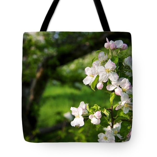 Apple Blossoms In The Orchard Tote Bag