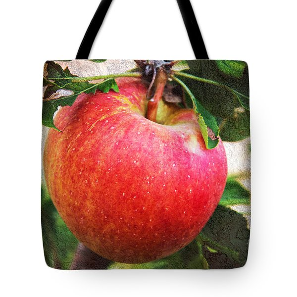 Apple On The Tree Tote Bag by Andee Design