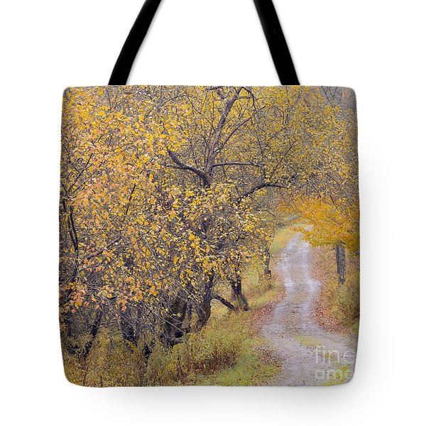 Apple Orchard Road Tote Bag by Alan L Graham