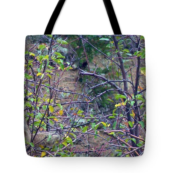 Apple Thief Tote Bag