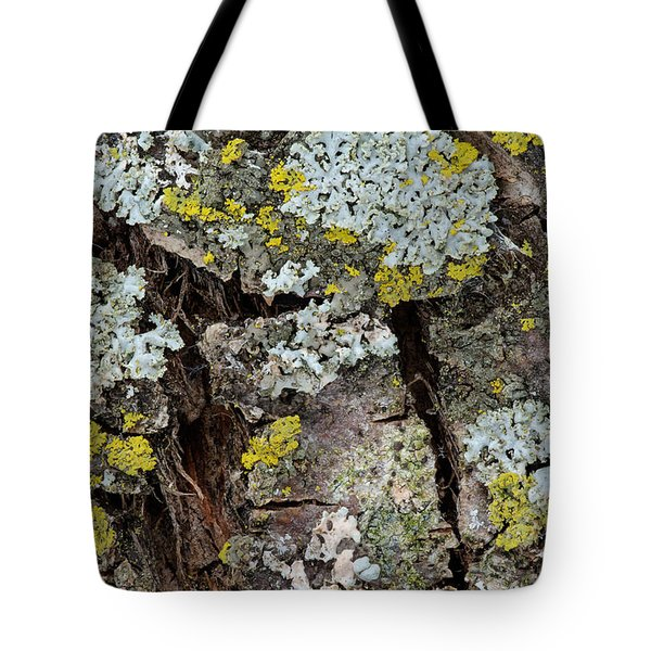 Apple Tree Lichens Tote Bag