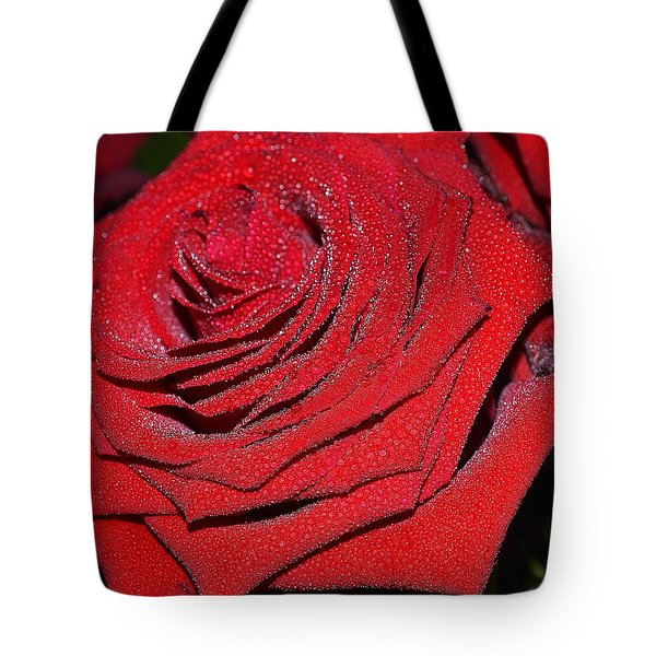 Approach Tote Bag by Felicia Tica