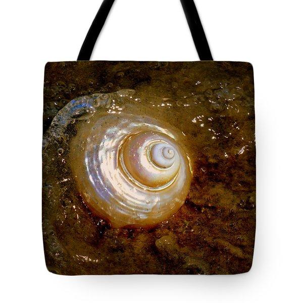 Apricot Oceans Tote Bag by Karen Wiles