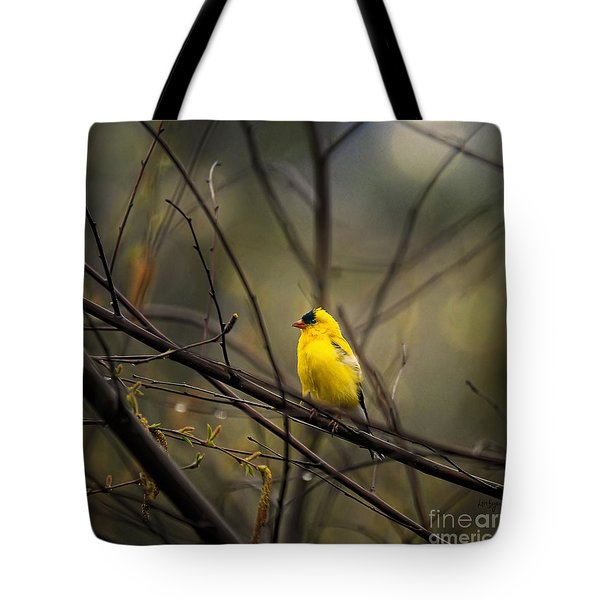 April Showers In Square Format Tote Bag