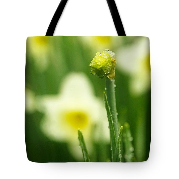 April Showers Tote Bag by Joan Davis