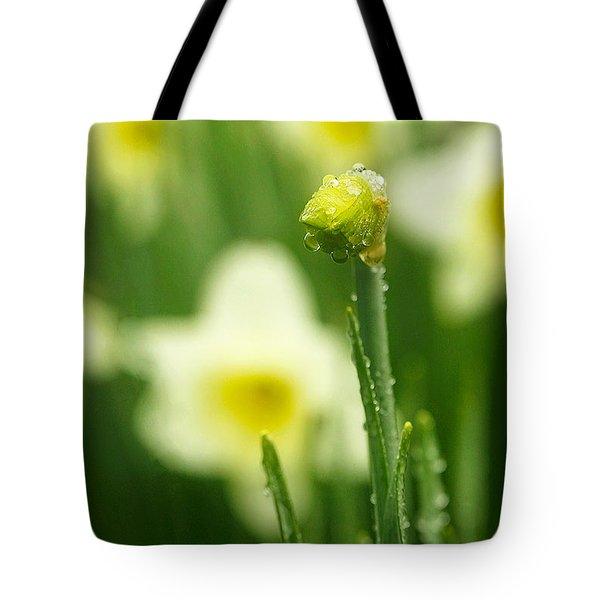 April Showers Tote Bag