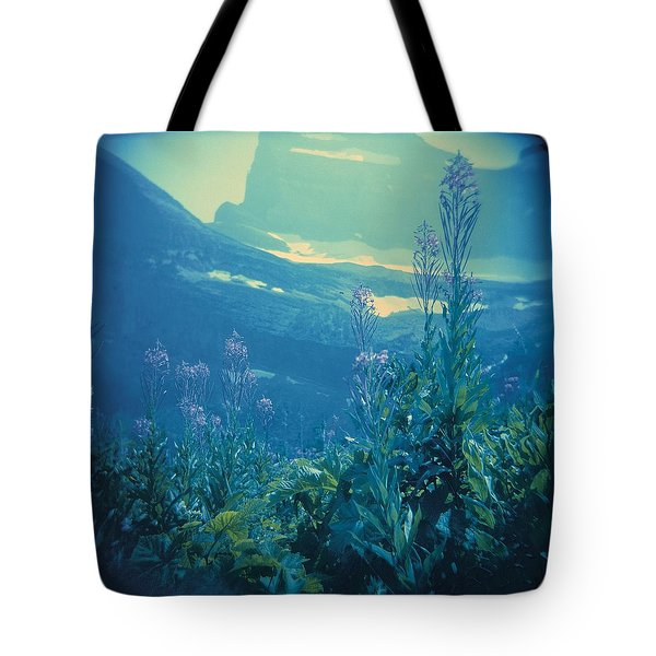 Tote Bag featuring the photograph Aquarium Mountain by Carol Whaley Addassi