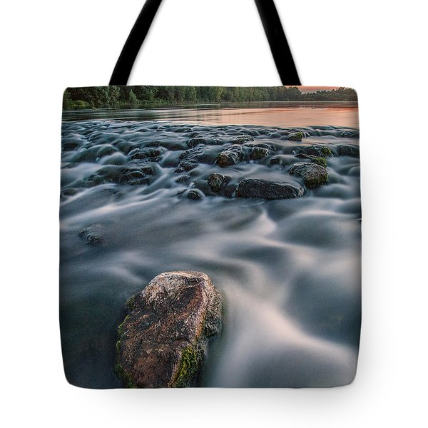 Aquatic Metalic Tote Bag by Davorin Mance