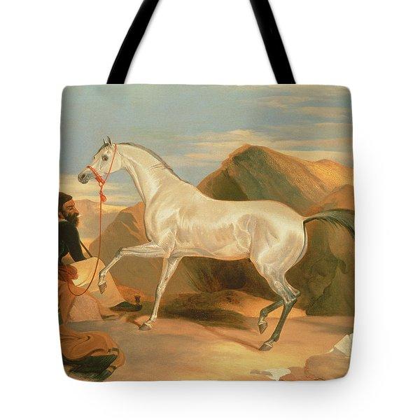 Arab Stallion Tote Bag