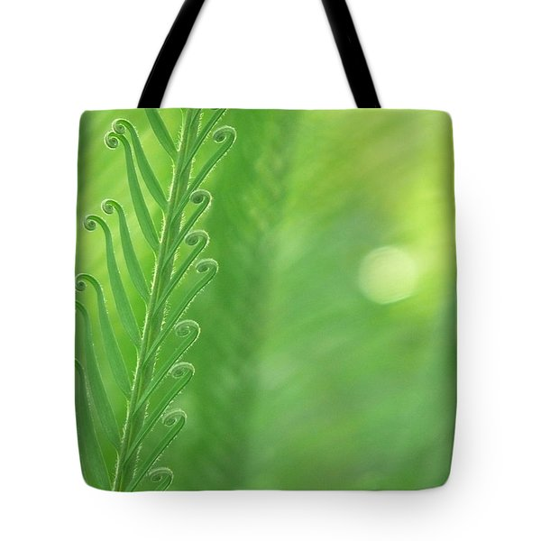 Tote Bag featuring the photograph Arabesque by Evelyn Tambour