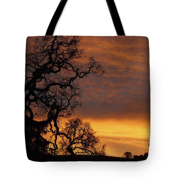 Tote Bag featuring the photograph Arastradero Open Space Preserve Sunset by Priya Ghose
