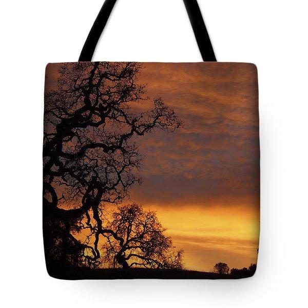 Arastradero Open Space Preserve Sunset Tote Bag by Priya Ghose
