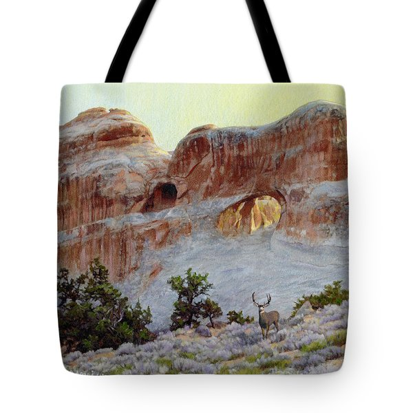 Arches Mulie Tote Bag