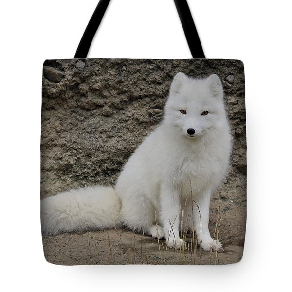 Arctic Fox Tote Bag by Athena Mckinzie