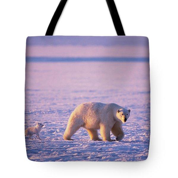 Arctic Fox Follows A Polar Bear Tote Bag