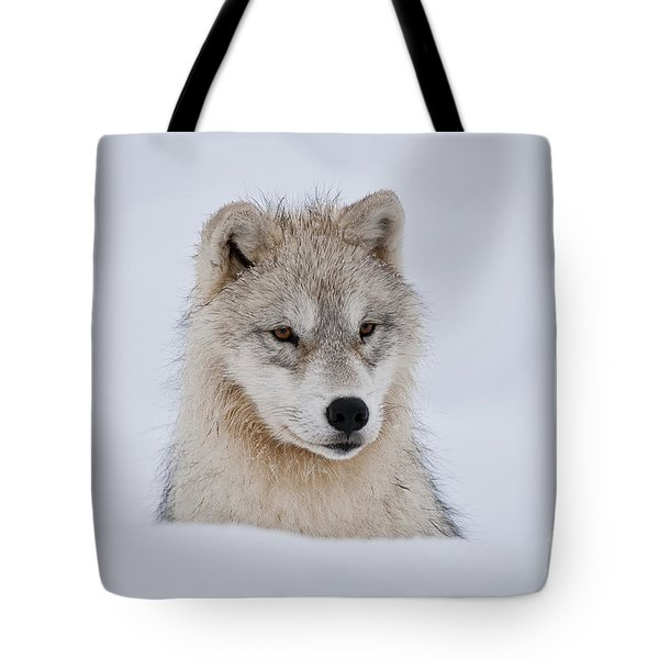 Arctic Pup In Snow Tote Bag