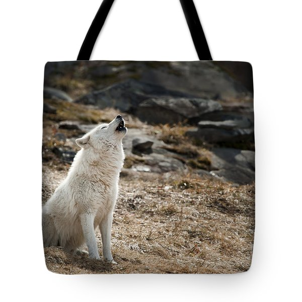 Tote Bag featuring the photograph Arctic Wolf Howling by Wolves Only